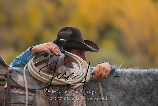 Picture of cowboy in Arizona autumn Cowboys working and playing. Cowboy Cowboy Photo Cowboy, Cowboy and Cowgirl photographs of western ranches working with horses and cattle by western cowboy photographer Jess Lee. Photographing ranches big and small in Wyoming,Montana,Idaho,Oregon,Colorado,Nevada,Arizona,Utah,New Mexico.
