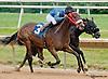 Goodtimehadbyall winning at Delaware Park on 8/3/13