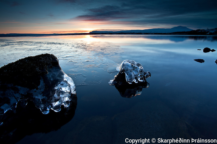 Frozen Fingers at lake Þingvallavatn, south-west Iceland