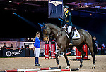 Riders attends the Master Class with Jane Richard Philips during the Longines Hong Kong Masters 2015 at the AsiaWorld Expo on 13 February 2015 in Hong Kong, China. Photo by Xaume OIleros / Power Sport Images