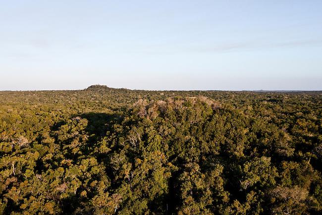 """Overflight over Mayan Biosphere Reserve, View on Temple complex """"El Tigre""""(front) and pyramid """"La Danta"""" at """"El Mirador"""" complex."""