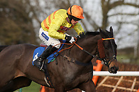 Getaway Driver ridden by Felix De Giles in action during the Connolly's Red Mills Horsefeed National Hunt Novices' Handicap Hurdle