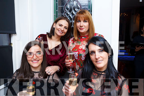 Girls night out in the Denny Lane restaurant on Saturday night. L-R Kaltrina Mehmeti, Bruna Bala, Mira Broche and Lili Miqi.