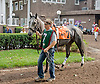 Rinella Bay before The Forever Together Stakes at Delaware Park on 9/1/12