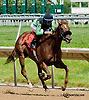 E Street Bourbon winning at Delaware Park on 6/17/13