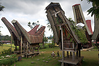 traditional village in Toraja land, Sulawesi, Indonesia. The traditional houses are called Tongkonan.