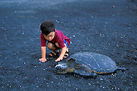 A young boy (age 5) is curious about this resting Green Sea Turtle at Punaluu Beach on the Big Isle.
