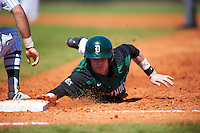 Dartmouth Big Green center fielder Trevor Johnson (36) dives back to first base on a pickoff attempt throw during a game against the Eastern Michigan Eagles on February 25, 2017 at North Charlotte Regional Park in Port Charlotte, Florida.  Dartmouth defeated Eastern Michigan 8-4.  (Mike Janes/Four Seam Images)