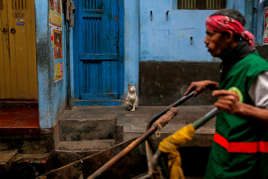 A cat sits at the entrance of a house, as a man pushes a cart and walks past in an alley early morning in Dhaka, Bangladesh.