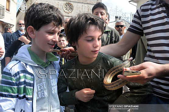 "The St. Domenico's procession in Cocullo, is held up by worshippers during an annual procession dedicated to the saint, in the streets of Cocullo, in the Abruzzo region, on May 1, 2012.....The St. Domenico's procession in Cocullo, central Italy. Every year on the first  of May, snakes are placed onto the statue of St. Domenico and then the statue is carried in a procession through the town. St. Domenico is believed to be the patron saint for people who have been bitten by snakes:..Italy, Cocullo, in the Province of L'A...quila, is at 870 meters a.s.l., along the railway line connecting Sulmona to Rome. The village rises alongside Mount Luparo (1327 meters) ""The valley opening in front of the village is surrounded by bare rocks, while on the other side, to the south, snow-capped mountain crests follow one after the other..."".San Domenico Abate lived in the 10th and 11th centuries AD. Born in Foligno, in the Umbria region, he started his pilgrimages, preaching and ascetic practices in Central Italy, making miracles recorded by the word-of-mouth tradition. He died on 22 January 1031 and was buried in Sora...Cocullo snake charmers are over with their snake hunting. They proceeded through the During the procession on the first in May, before the snakes are placed all over the statue of St. Dominick, they will be fed with milk kept in containers with crusca. It is the snake that, most of all other elements, expresses an ancestral myth: the unknown aspect and unpredictability of the natural environment with man's innate need to achieve the dominance on his own habitat. ..Snakes and wolves were the emblems of Italic peoples like the Marsians and Irpinians. Some areas in Abruzzo, especially in the Sagittario valley, were under the menace of wolves and snakes, which for the local populations represented the uncertainty and anxiety of their existence that, together with the precariousness and hardships of life, were almost unbearable. Therefore the community adopted such magic"