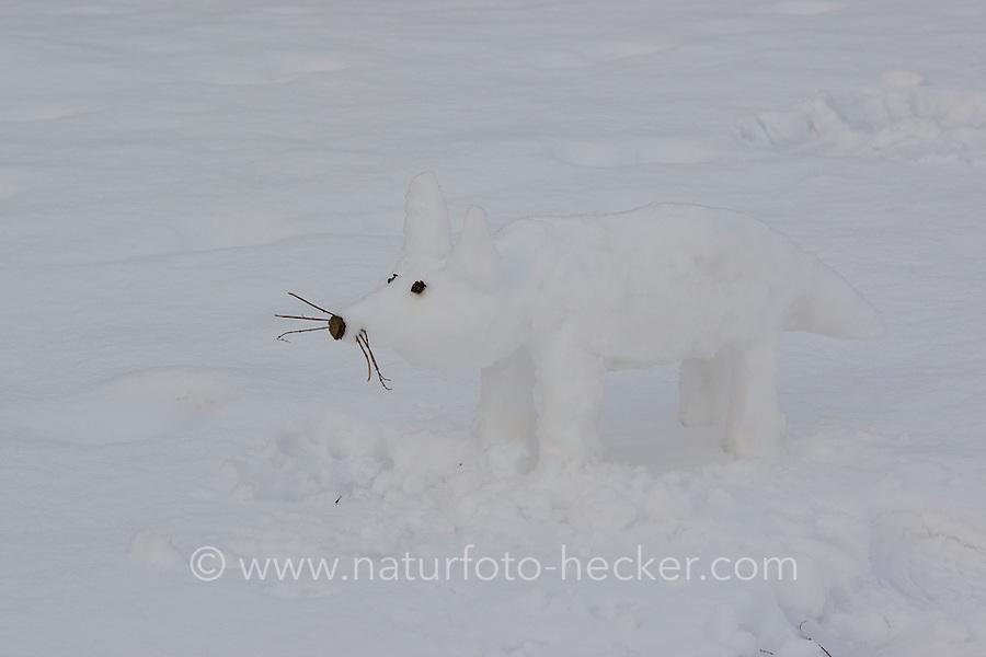 Kinder bauen einen Fuchs, Rotfuchs aus Schnee