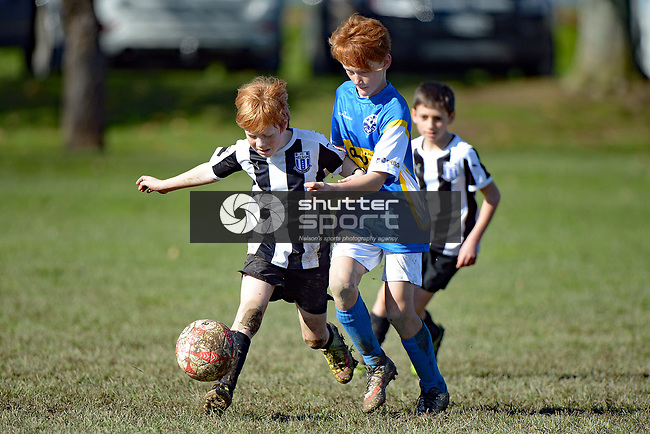 NELSON, NEW ZEALAND - August 12: Kids Football, August 12, 2017, Saxton, Nelson, New Zealand. (Photo by: Barry Whitnall Shuttersport Limited)