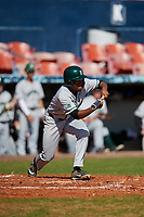 Dartmouth Big Green designated hitter Blake Crossing (13) bunts during a game against the Bradley Braves on March 21, 2019 at Chain of Lakes Stadium in Winter Haven, Florida.  Bradley defeated Dartmouth 6-3.  (Mike Janes/Four Seam Images)