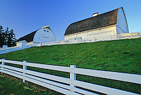 Low angle view of 2 barns with sunset lighting at Kelsey Creek Farm Park, Bellevue, Washington.