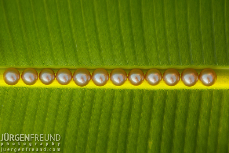 A dozen golden pearls on a banana leaf