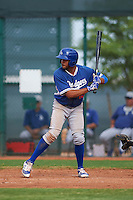 Los Angeles Dodgers Jared Walker (13) during an instructional league game against the Cleveland Indians on October 15, 2015 at the Goodyear Ballpark Complex in Goodyear, Arizona.  (Mike Janes/Four Seam Images)