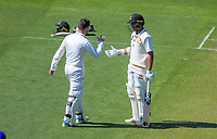 Wellington's Devon Conway congratulates Rachin Ravindra on his half century during day two of the Plunket Shield cricket match between the Wellington Firebirds and Otago Volts at the Basin Reserve in Wellington, New Zealand on Tuesday, 22 October 2019. Photo: Dave Lintott / lintottphoto.co.nz