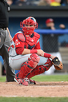 Lowell Spinners catcher Jordan Procyshen (34) looks to the dugout during a game against the Batavia Muckdogs on July 16, 2014 at Dwyer Stadium in Batavia, New York.  Lowell defeated Batavia 6-4.  (Mike Janes/Four Seam Images)