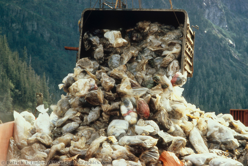 Exxon Valdez Oil Spill Clean up debris and trash.  August 1989, Prince William Sound, Alaska