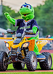 22 June 2017: Vermont Lake Monsters Mascot Champ entertains the fans prior to a game between the Brooklyn Cyclones and the Vermont Lake Monsters at Centennial Field in Burlington, Vermont. The Cyclones defeated the Lake Monsters 5-3 in NY Penn League action. Mandatory Credit: Ed Wolfstein Photo *** RAW (NEF) Image File Available ***