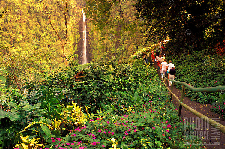 Tourists at Akaka falls, near Hilo, on the Big Island