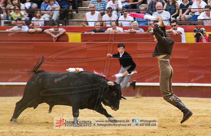 Feria de Julio de Valencia.<br /> I Certamen de Escuelas Taurinas.<br /> Clases Practicas.<br /> <br /> Novillos de La Palmosilla.<br /> <br /> Pedro Jose Aguilar - E.T. Malaga.<br /> Juan Jose Villa &quot;Villita&quot; - E.T. Madrid.<br /> Hector Edo - E.T. Castellon.<br /> Guillermo Garcia - E.T. Madrid.<br /> Rodrigo Ortiz - E.T. Valencia.<br /> Manuel de Reyes - E.T. Nimes/Catalu&ntilde;a.<br /> <br /> 14 de julio de 2017.<br /> <br /> Coso de la Calle Xativa.<br /> Valencia, Valencia - Espa&ntilde;a.