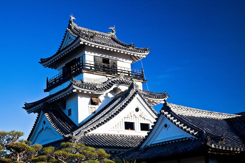 Elegant curves of Kochi castle set  against blue sky.