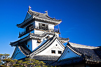 Elegant curves of Kochi castle set  against blue sky.