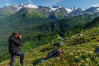 Summer landscape of photographers on hillside of Alyeska Resort in Chugach Mountains.    <br /> <br /> Photo by Jeff Schultz/SchultzPhoto.com  (C) 2018  ALL RIGHTS RESERVEDThurmer Tours Photo Tour  June, 2018 Alaska