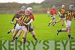 Abbeydorney V ballyheigue in the County League Final in Abbeydorney on Sunday.PJ Kean (Abbeydorney) and Ronan Kenny and Gerry Crean (Ballyheigue).............