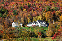 New mountainside home with autumn color.