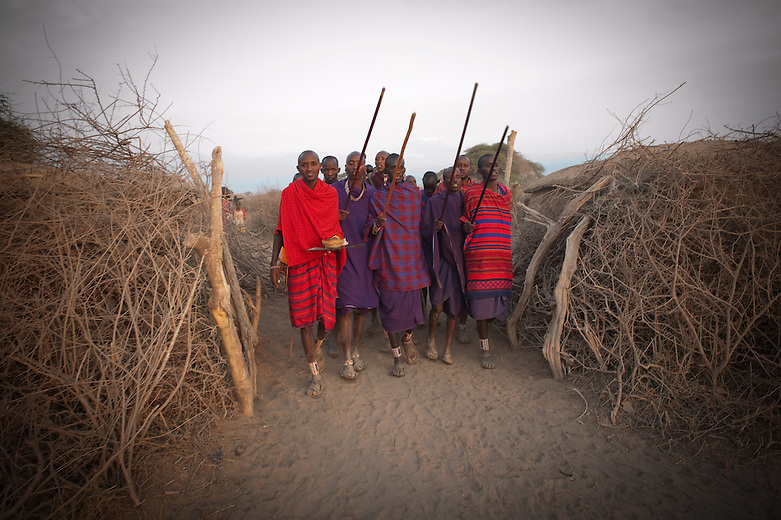 Maasai families live in an Enkang (a form of enclosure, stockade or kraal) formed by a thick round 'fence' of sharp thorn bushes; this protects the tribe and their cattle, especially at night, from rival tribes and other predators. The Enkang may contain 10-20 small squat huts made from branches pasted with fresh cow-dung.  The Enkang used to be 'temporary' and something that could be built elsewhere if the Maasai had to migrate to fresh areas of grazing.  Due to convenience brought about by proximity to tourist lodges and other amenities provided by government, charitable organizations and even missionaries, women and children may stay in more permanent homesteads