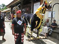 guard waiting for procession to start, village Laplapan, cremation ceremonies, Bali, archipelago Indonesia