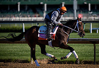 LOUISVILLE, KY - MAY 02: Miss Sky Warrior gallops at Churchill Downs on May 02, 2017 in Louisville, Kentucky. (Photo by Alex Evers/Eclipse Sportswire/Getty Images)