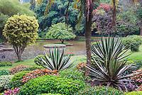 Photo of the Lake at Kandy Royal Botanical Gardens, Peradeniya, Kandy, Sri Lanka, Asia. This is a photo of the lake at Kandy Royal Botanical Gardens at Peradeniya, just outside Kandy in Sri Lanka, Asia.