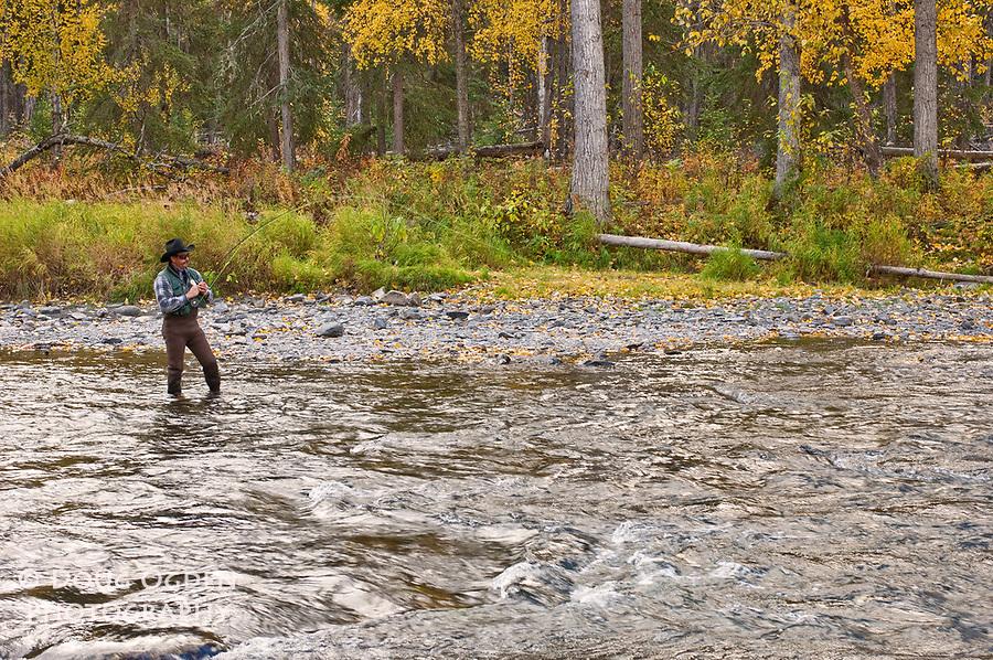 Fish On!  Salmon Fisherman on the Russian River, Alaska