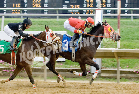 Cusabo winning at Delaware Park on 10/27/12..