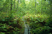 Lake Champlain Island Vermont