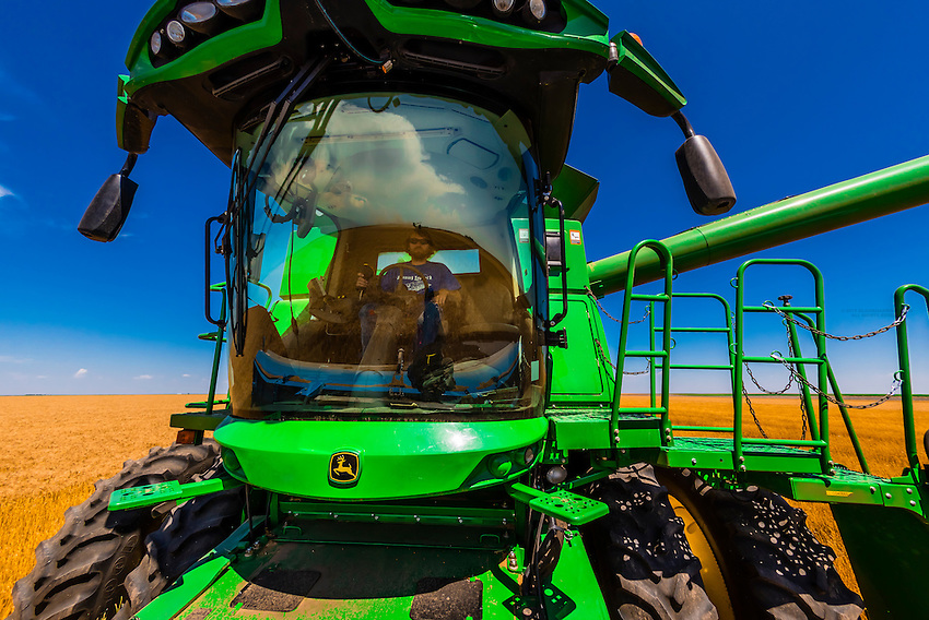 Combines at work during the wheat harvest, Shields & Sons Farming, Goodland, Kansas USA.