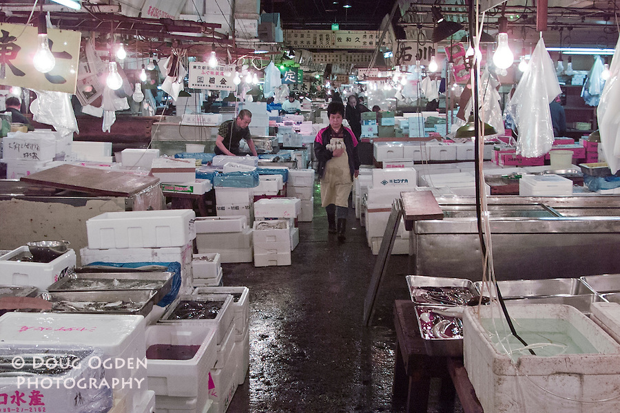 In the buyers area where the fish are prepardred for distribution, Tsukiji fish market, Tokyo Japan