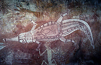 Crocodile painting showing some internal organs. Aboriginal Rock art in Arnhem Land, Northern Territory Australia
