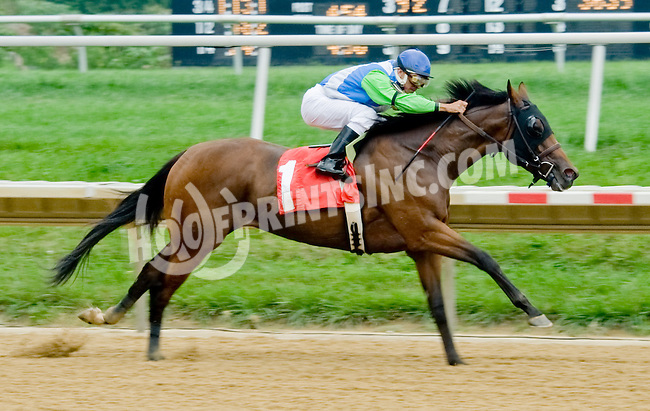 Sister Earth winning at Delaware Park on 9/6/12