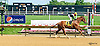 Old Time Hockey winning at Delaware Park on 6/8/16
