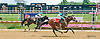 Miss Prudence winning at Delaware Park on 8/8/15