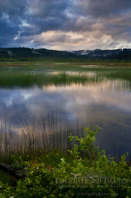 Storm clouds and fog at sunrise over Big Lagoon Marsh, Humboldt Lagoons State Park, California
