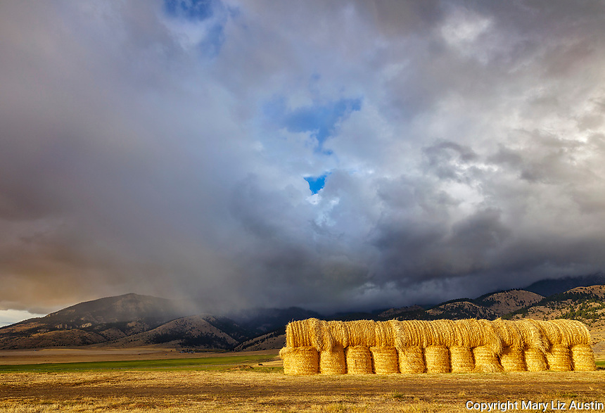 Gallatin County, MT: Sunlight on stacked hay bales with storm clouds over the Bridger Range
