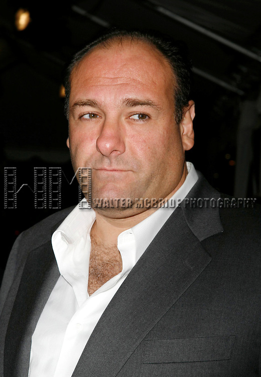 James Gandolfini<br /> attending the Toronto International Film Festival <br /> ( TIFF ) Gala Preniere of ALL THE KING's MEN  at the Roy Thomson Hall on September 10, 2006 in Toronto, Canada.