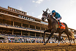SEPT 02: Yesterdayoncemore with Victor Espinoza  the Del Mar Derby Juvenile Fillies at Del Mar Thoroughbred Club in Del Mar, California on September 02, 2019. Evers/Eclipse Sportswire/CSM