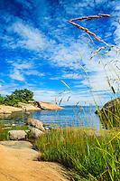 Gräs vid röda hällar på Rödlöga Stockholms skärgård Roslagen. / Grass at the red rocks of Rödlöga Stockholm archipelago Sweden.