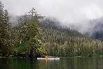 Alaska, Prince William Sound, Esther Passage, lone sea kayaker, old growth coastal rainforest, David Fox, released,.